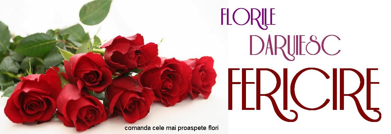 floraria fleur boutique iasi