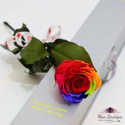 Trandafir rosu stabilizat AFS026