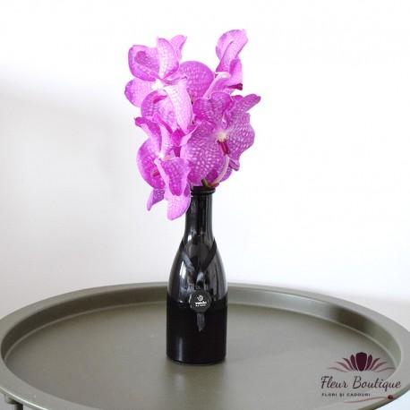 """Cadou Floral - """"Vanda Exclusive"""""""