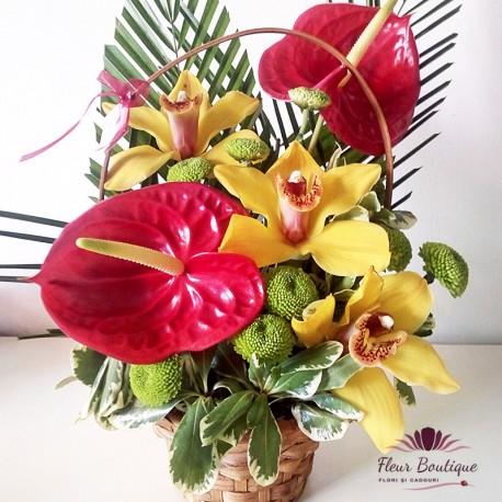Cos floral Entuziasm CF038