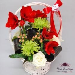 Cos flori Premium CF067