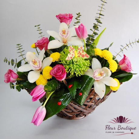 Cos flori Harmony CF068