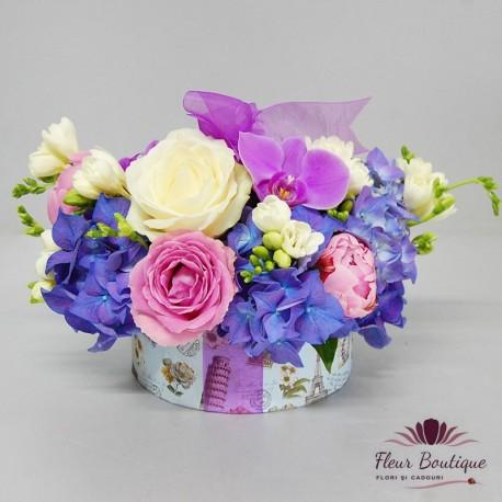 Cutie flori Hydrangea CTF012