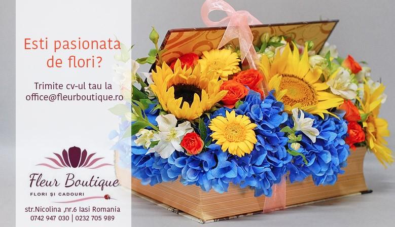 angajare-florarie-iasi