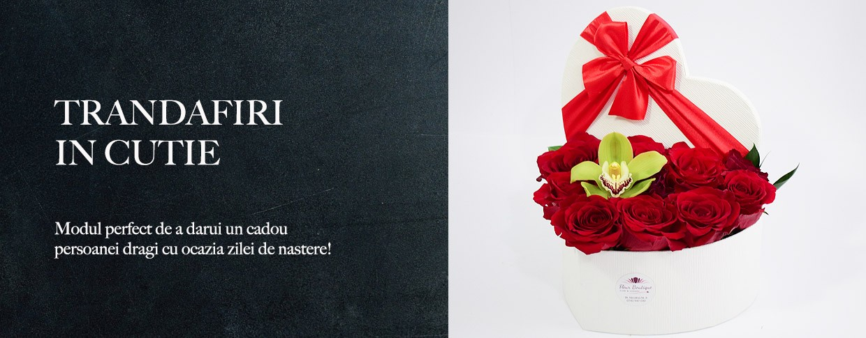 trandafiri-in-cutie