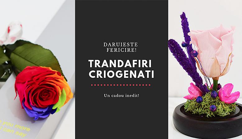 trandafiri-criogenati